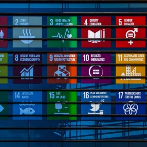 Promoting the SDGs on FMO Building.jpg